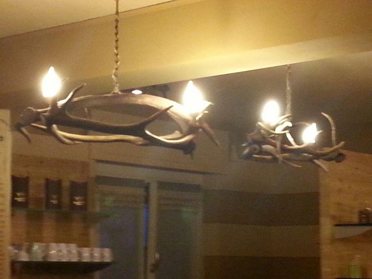 cerco lampadari : Esempio di lampadario in corna di cerco