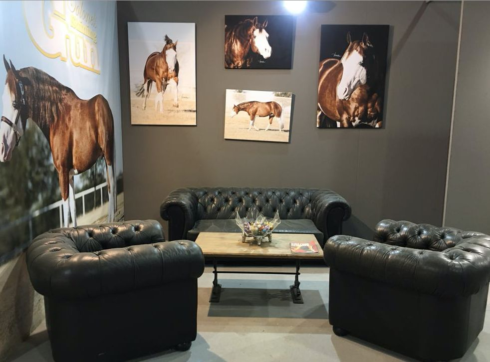 Allestimento stand al salone del cavallo americano a Cremona schermata2018-06-04alle12.50.51.png