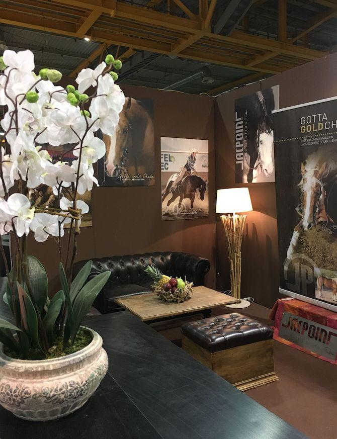 Allestimento stand al salone del cavallo americano a Cremona schermata2018-06-04alle12.52.06.png
