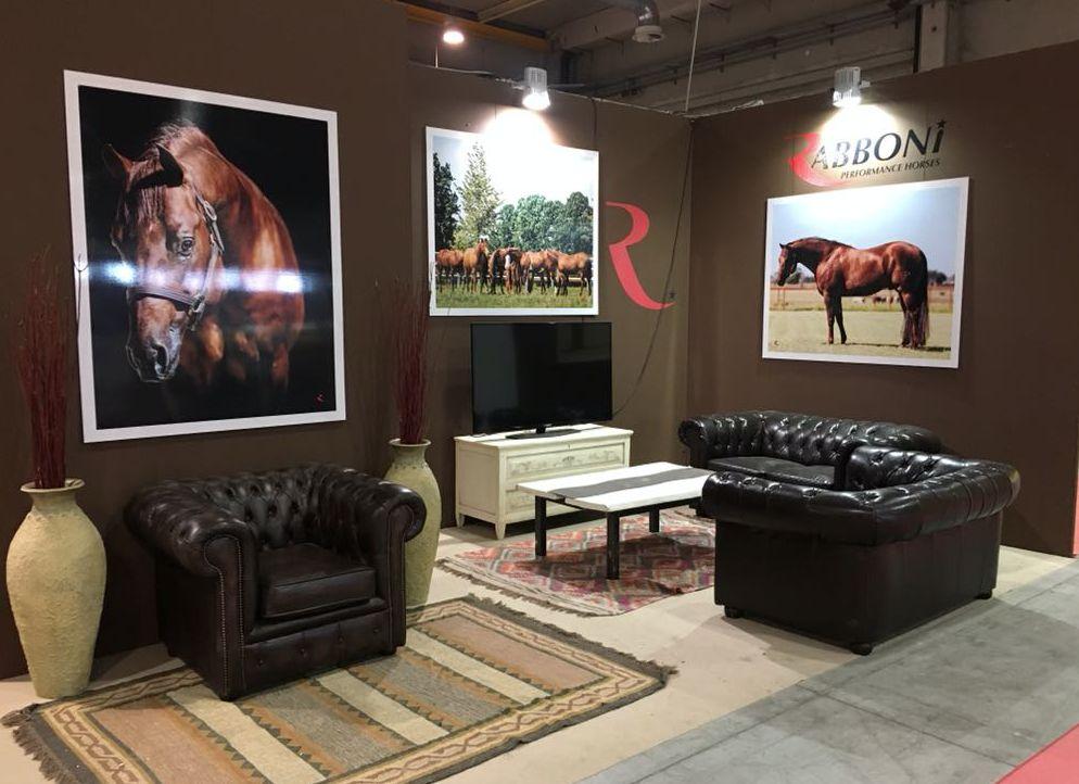 Allestimento stand al salone del cavallo americano a Cremona schermata2018-06-04alle12.52.45.png