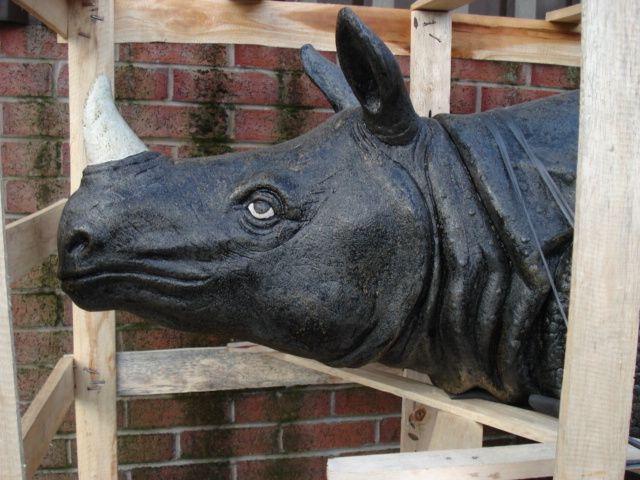 Rinoceronte 010.jpg