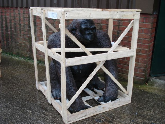 Gorilla 029.jpg