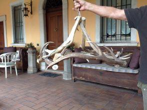 Lampadario Nanan Rosa : Lampadario corna di cervo usato lampadario nanan powrgard